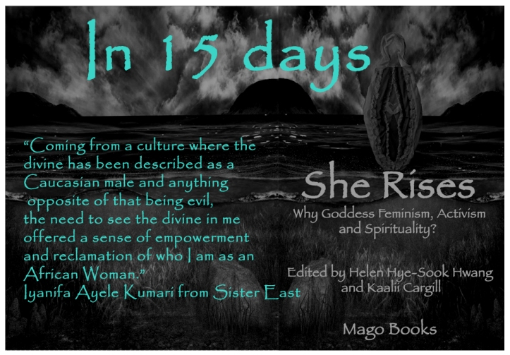 15 days copy