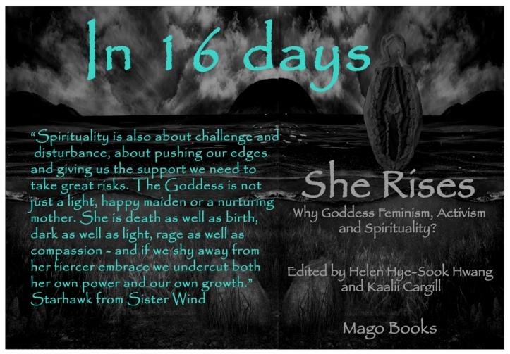16 days to go copy