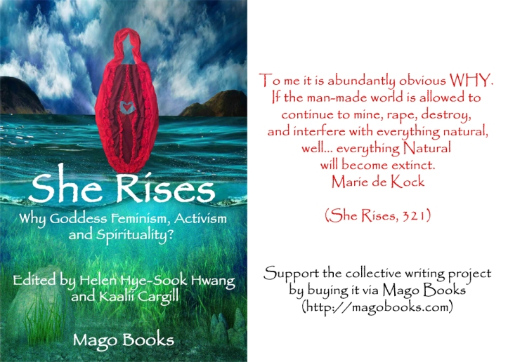 She Rises Marie de Kock